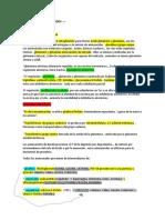 55489826-BIOSINTESIS-AMINOACIDOS-RESUMEN.docx