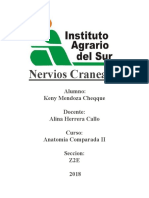 Nervios Craneales ALINA