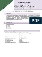 Curriculum Vitae Sulmi Mego Delgado (1)