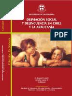 Desviación Social y Violencia en Chile y La Araucanía