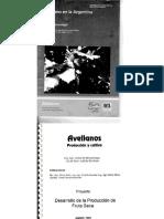 Avellano Idevi PDF