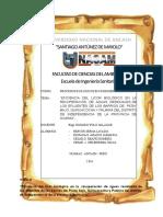 Eficiencia-del-Licor-Biológico.docx