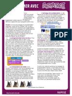 programmer.pdf