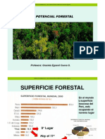 2Potencial Forestal (1)