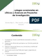 Manejo Plagas en Citricos R RIPA 2016