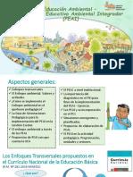 Implementación Del Peai en El Marco Del Cn