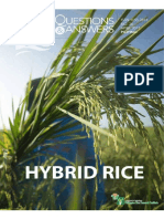 Rice Booklet - Hybrid Rice Q and A