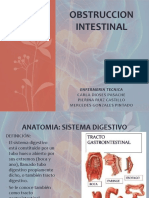 Obstruccion Intestinal Trabajo