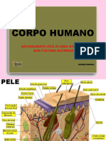 Corpo Humano-Para Consultar