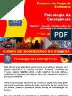 Módulo 1 - PSI 2015 - Introdução (1)