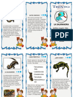 Triptico La Salamandra