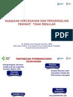 Kebijakan Pencegahan Dan Pengendalian Penyakit Tidak Menular Di Indonesia