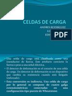 139545954-Celdas-de-Carga.pptx