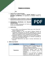 Termino de Referencia Tecnico Asesor Mecanico CAS2018 (2)