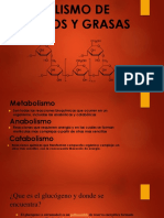 20180612_161137-Metabolismo de Glucidos y Grasas