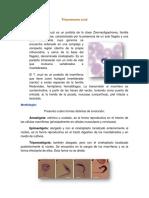 Tripanosoma cruzi (1)