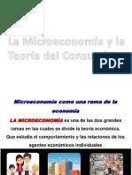 la microeconomia y la teoría del consumidor