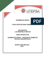 Examen de Grado Tesis Pate de Finas Hierbas ARCE MARCELO (1)