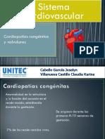 Sistema Cardiovascular 2018