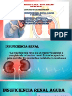 Insuficiencia Renal Expo-1511886172