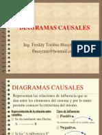 001_DIAGRAMAS_CAUSALES.pdf