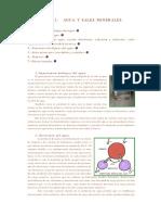 AGUA  Y  SALES  MINERALES.pdf
