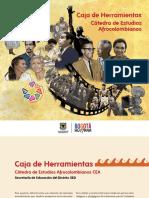 Presentacion Catedra Estudios Afrocolombianos