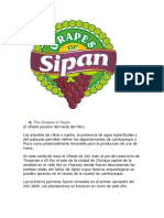 The Grapes of Sipan.docx