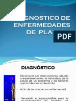 Diagnostico de Enfermedades2013