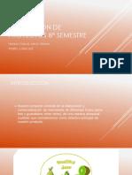 Evaluación-de-proyectos-8-semestre.