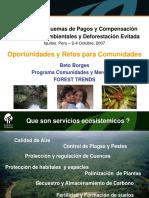 08-BetoBorges-OportunidadesyRetosparaComunidades