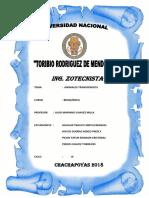 Informe de Transgénicos Modificado