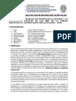 PLAN DE TRABAJO  TOE 2018-UGEL 1.docx