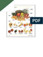 Frutas Frances Ingles