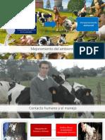Mejoramiento del ambiente-LEGAL.pptx