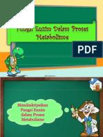 Fungsi Enzim Dalam Proses Metabolisme