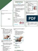 Triptico Enfermedades Sistema sanguineo 1.docx