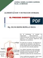 Clase 8. Digestion II 1