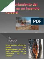 Incendios Forestales Mayo2018