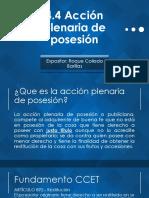 4.4 Acción Plenaria de Posesión