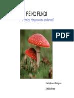 388501162.Reino Fungi