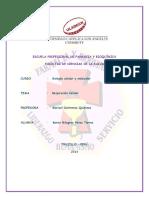 respiracion celular II.pdf
