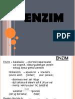 3._ENZIM