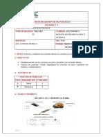 INFORME-CIRCUITOS.docx