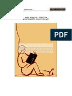 LE 33 - Comprensión de Lectura VII.pdf