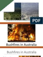 Bushfires Oral Presentation Model Ppt