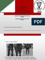 DEGENERACION DE GRASA.pptx