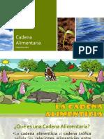 Cadena Alimentaria.pptx