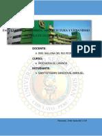 SEÑALES PARA CARRETERAS Y PISTAS .docx