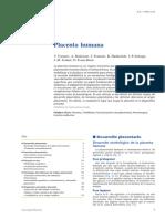 Placenta Humana Bueno